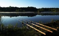 fishing rods at lake