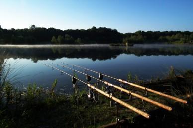 fishing rods at lake