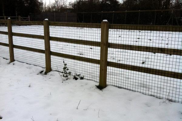 Goat Fencing Web Pocket Farm Magazine