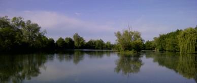 carp lake view