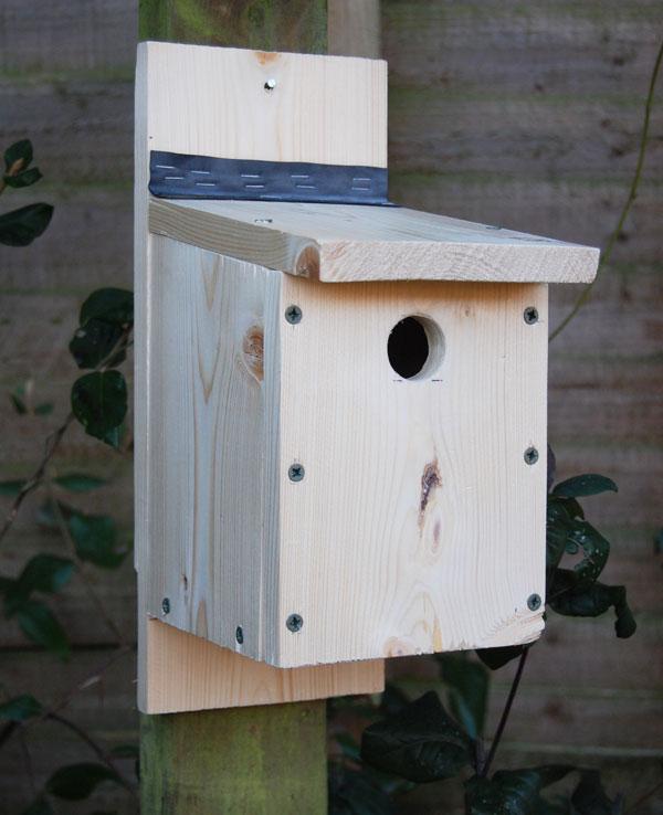 Project Build A Bird Box Pocket Farm Magazine