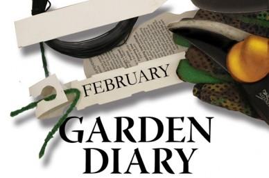 Garden diary february