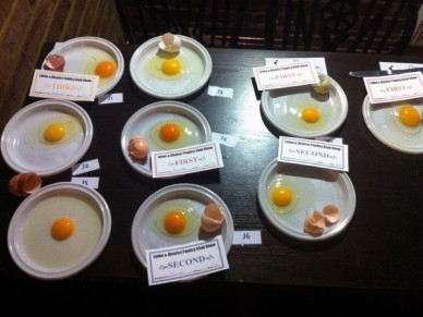 Egg contents show