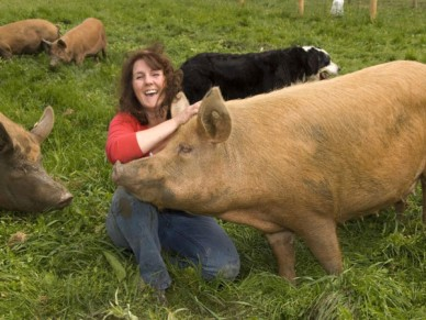 Liz Shankland with ther Tamworth pigs
