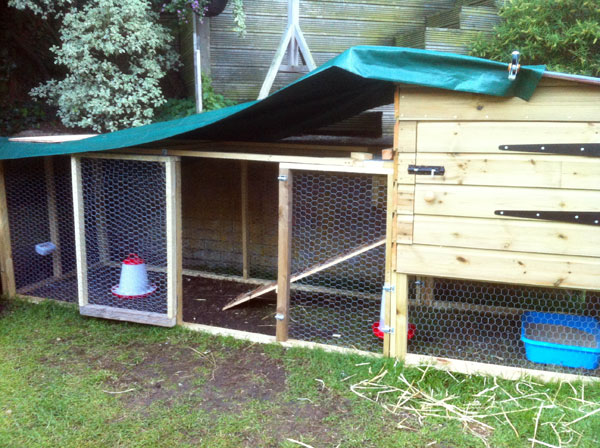 Chicken coop with side door added
