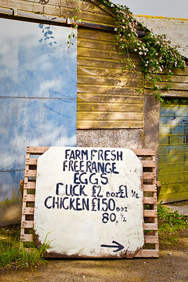 Selling from the farm gate