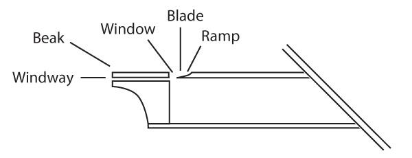 Whistle diagram