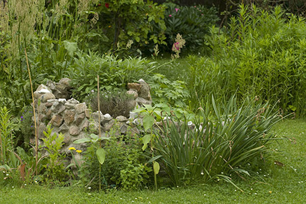 Overgrown herb spiral