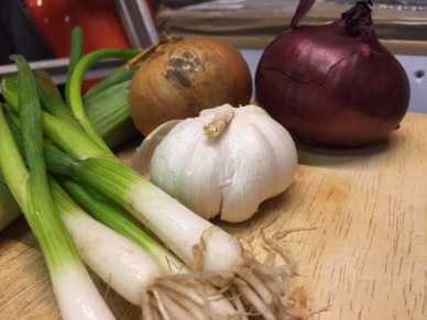 A groups of alliums including onions and garlic