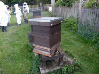 A 'national' design hive