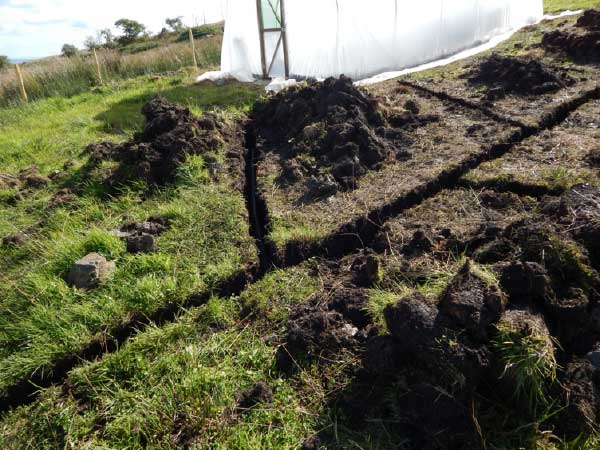French drains going in with polytunnel in the background