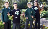 Children growing vegetables in schools